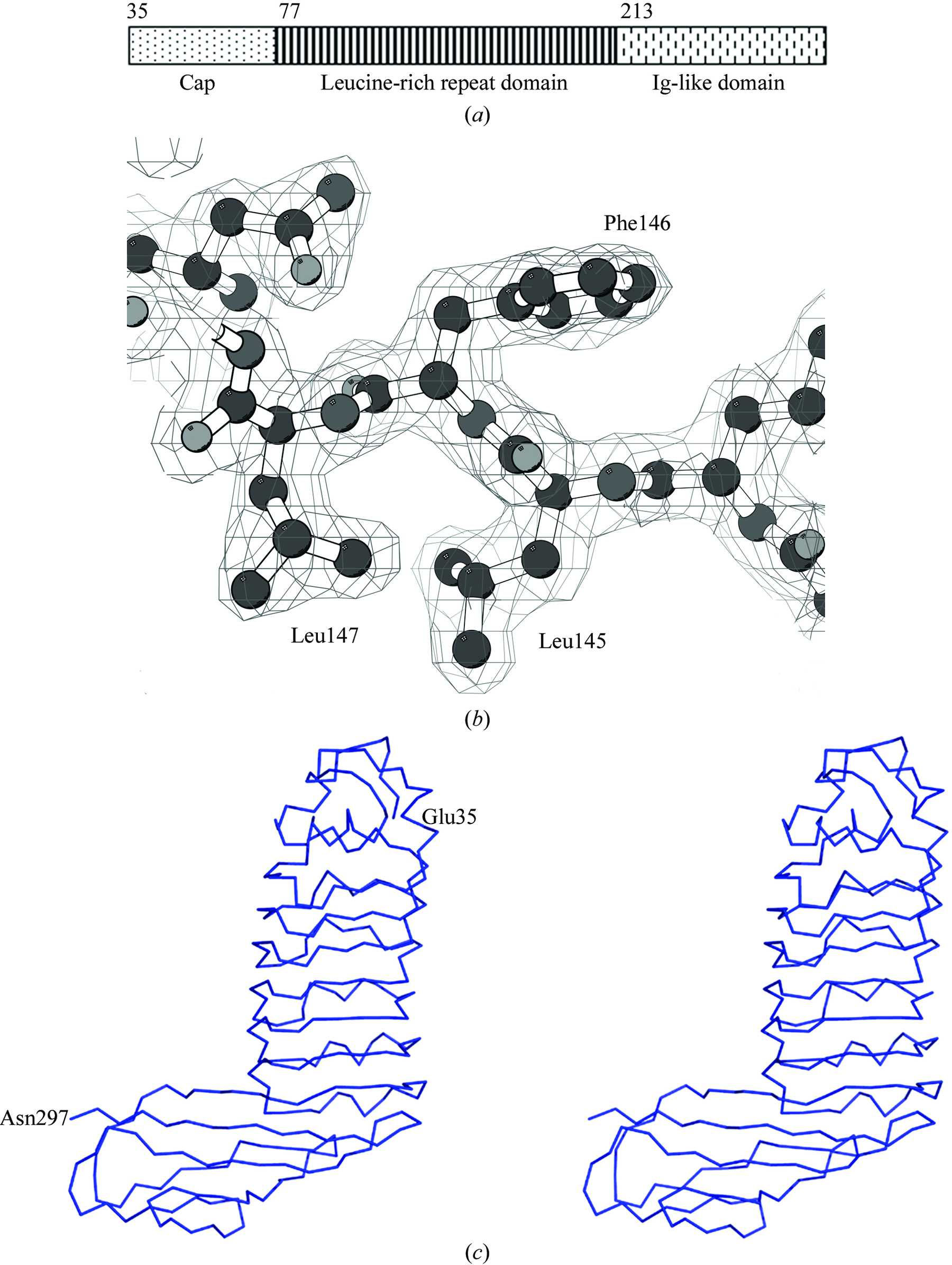 Iucr Structure Of Internalin C From Span Class It I Listeria Monocytogenes